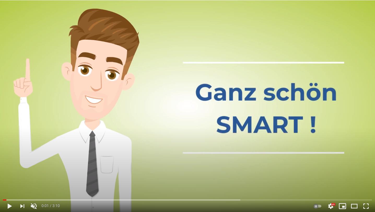 """Projektmanagement """"fast & simple"""": Das Erfolgsgeheimnis der SMARTen Typen"""